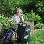 Gartenprojekt Rosengärtchen - Blumenschnitt