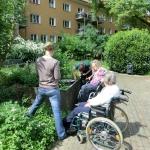 Gartenprojekt Rosengärtchen - Viel zu tun am Hochbeet